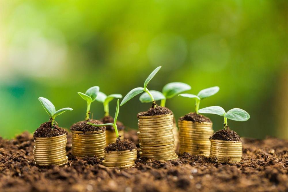 Инвесторов Ставрополья освободят на пять лет от налогов на имущество