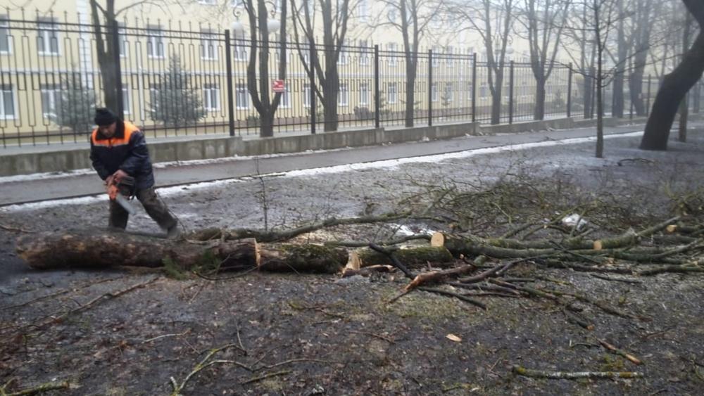 На ликвидацию последствий урагана в Ставрополе могут выделить деньги из краевого бюджета