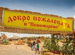 Знаменитая бахча Пономарево может закрыться по решению суда