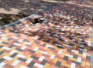 «Челлендж печально закончился», - ставропольцы о яме в новом тротуаре