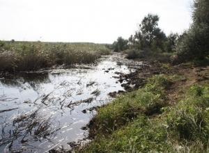 Крупная утечка нефти в реку Ставрополья обойдется «Черномортранснефти» почти в 100 миллионов рублей