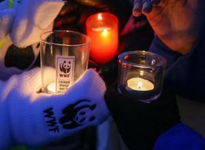 «Час Земли» жители проведут в темноте 25 марта в Ставрополе
