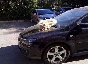 Полный мусорный пакет выкинули на капот перегородившей дорогу иномарке жители Ставрополя