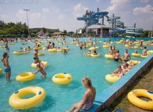Стать акционером крупнейшего аквапарка на Юге России сможет любой житель Ставрополя