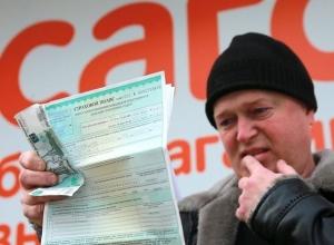 Оформляем полис ОСАГО: как не угодить в лапы мошенников на Ставрополье