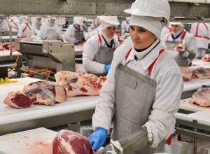 Мясоперерабатывающий комбинат за 3 миллиарда рублей построят в Минводах