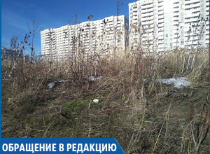 Гетто на окраине Ставрополя: заброшенный район погряз в темноте, клещах и горах мусора