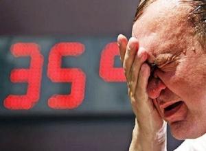 Из-за аномальный жары ставропольских энергетиков переведут в режим повышенной готовности
