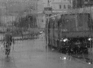 Дождь и туман ждут в понедельник жителей Ставрополья