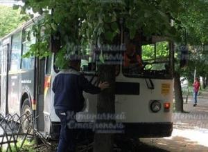 Пассажир избил водителя троллейбуса и спровоцировал ДТП в Ставрополе, - очевидцы