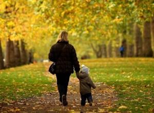 Появилась программа празднования Дня матери в Ставрополе