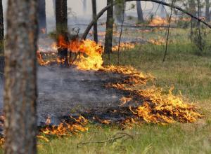 Высокая пожароопасность ожидается в выходные на Ставрополье