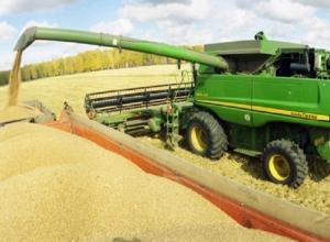 О старте уборки урожая поспорили правительство и минсельхоз Ставропольского края