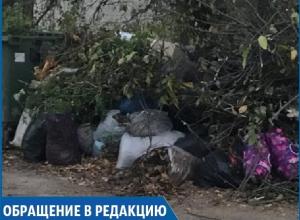 «На три улицы один мусорный контейнер», - жительница Ставрополя
