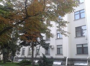 Каштанов на Ставрополье может не остаться в скором времени