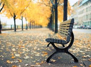 Теплый и пасмурный день ждет Ставрополь в конце рабочей недели