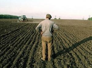 Хитрый пенсионер продал жителю Пятигорска чужой участок земли и перестал отвечать на звонки