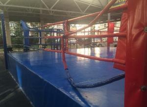 Дети разгромили бесплатные тренажерные залы в «Перспективном»
