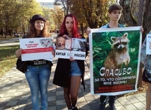 Жительниц Ставрополя рассердила акция против убийства животных ради одежды