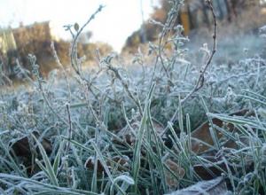 Заморозками на выходных пугают ставропольцев синоптики