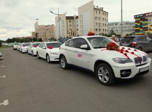 Свадебные кортежи будут штрафовать за шумные гуляния на Ставрополье