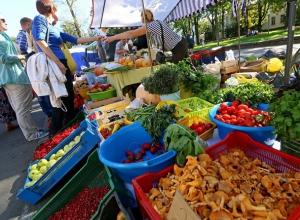 В Ставрополе откроется ярмарка выходного дня