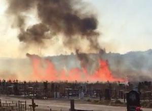 В Ессентуках сильно горит кладбище - видео очевидцев
