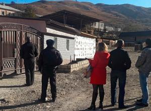 Выпас коров и лошадей запретили на Кавминводах