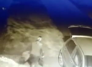 Женщина выкопала чужие кусты и попала на видео в Ставропольском крае
