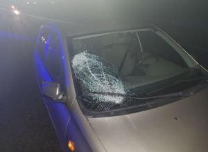 Сразу две машины насмерть задавили пешехода под Ставрополем
