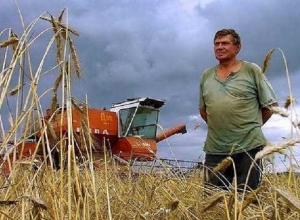 Ставропольские фермеры смогут получить до 30 миллионов рублей в качестве грантов