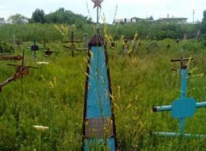 Ерундой назвали инициативу активистов привести в порядок заброшенные могилы участников ВОВ