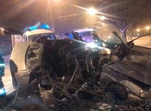 Водитель погиб в ночном столкновении иномарки с деревом в Ставрополе