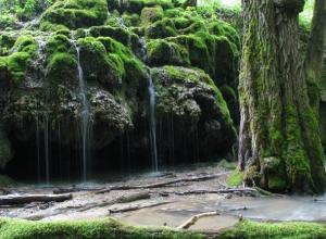 Сказочный лес и Травертиновый источник в Ставрополе