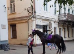 Штраф в 100 тысяч рублей получила предпринимательница за падение 5-летней девочки с лошади в Ставрополе