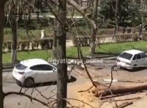 Огромное иссохшее дерево упало на машину в Пятигорске — пострадала женщина