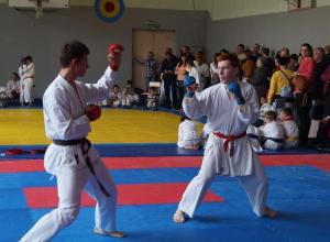 В Ставрополе завершилось открытое первенство города по карате
