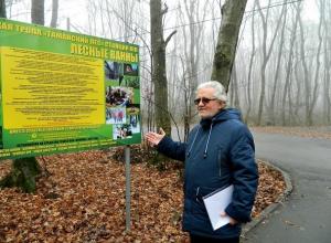 Новую экологическую тропу открыли в Таманском лесу Ставрополя