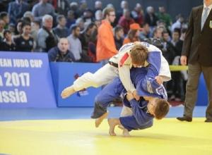 «Золото» кубка Европы завоевал на ковре в Туле ставропольский дзюдоист