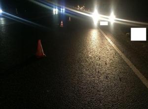 Под колесами грузовика на Ставрополье погиб пешеход