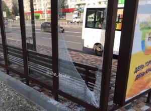 «Быдло с каникул вернулось»: вандалы разбили новую стеклянную остановку в Ставрополе