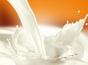 Депутаты в недоумении от роста цен на молоко на Ставрополье
