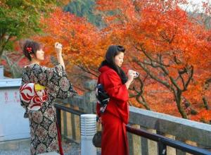 «Отголоски буддизма»: о тайнах японских садов рассказали жителям Ставрополя