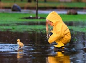Дожди и облачность уберегут Ставрополье от невыносимой жары в ближайшие дни