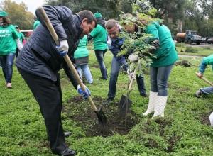 Четыре тысячи берез, лип, рябин и акаций посадили в Ставрополе