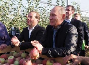 Владимир Путин похвалил ставропольские яблоки