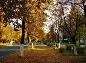 Теплый погожий день без осадков ждет Ставрополь 13 ноября