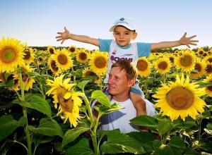«Еврохим» увеличит поставки минеральных удобрений в Краснодарский край