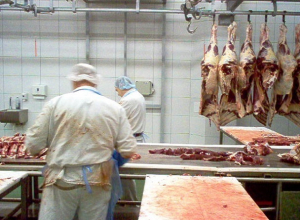 Крупный завод по переработке баранины за 3,2 миллиарда рублей построят на Ставрополье