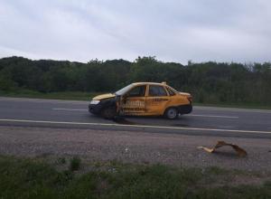 Таксист-нарушитель спровоцировал ДТП на одной из трасс Ставрополья